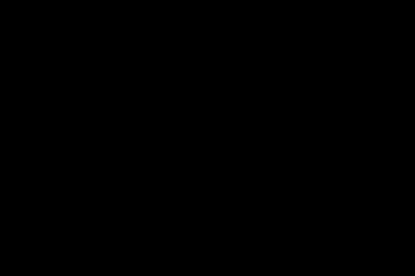 2 silhoutten