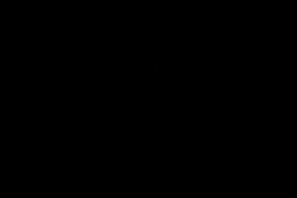 3 silhoutten